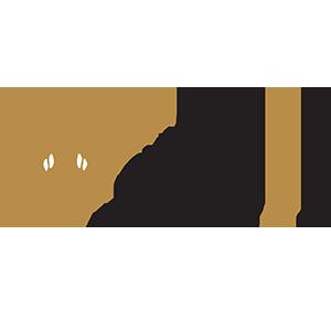 Voyages Les Ailes D'Or