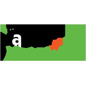 Panda Vacations